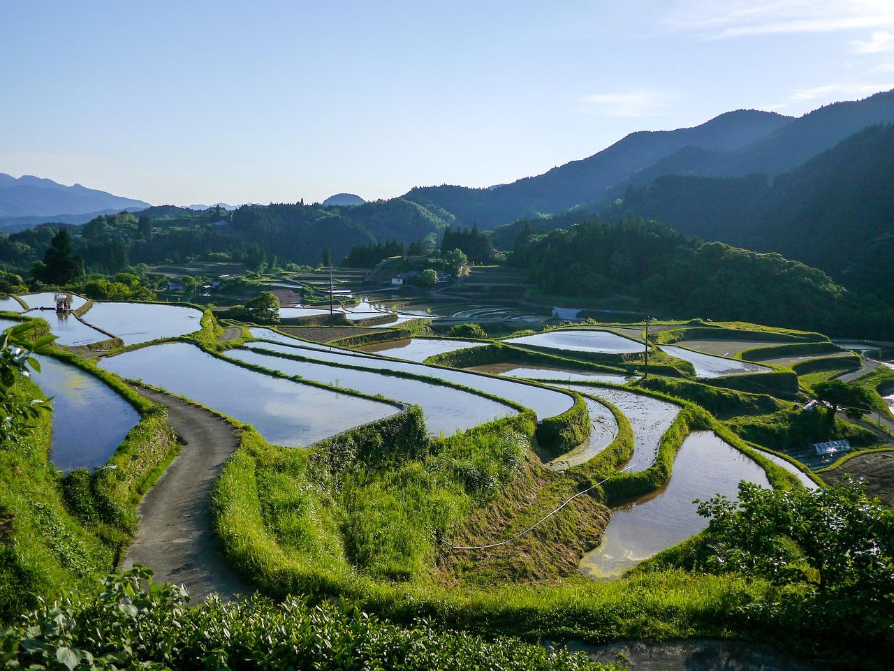 江戸時代における農民の土地相続について