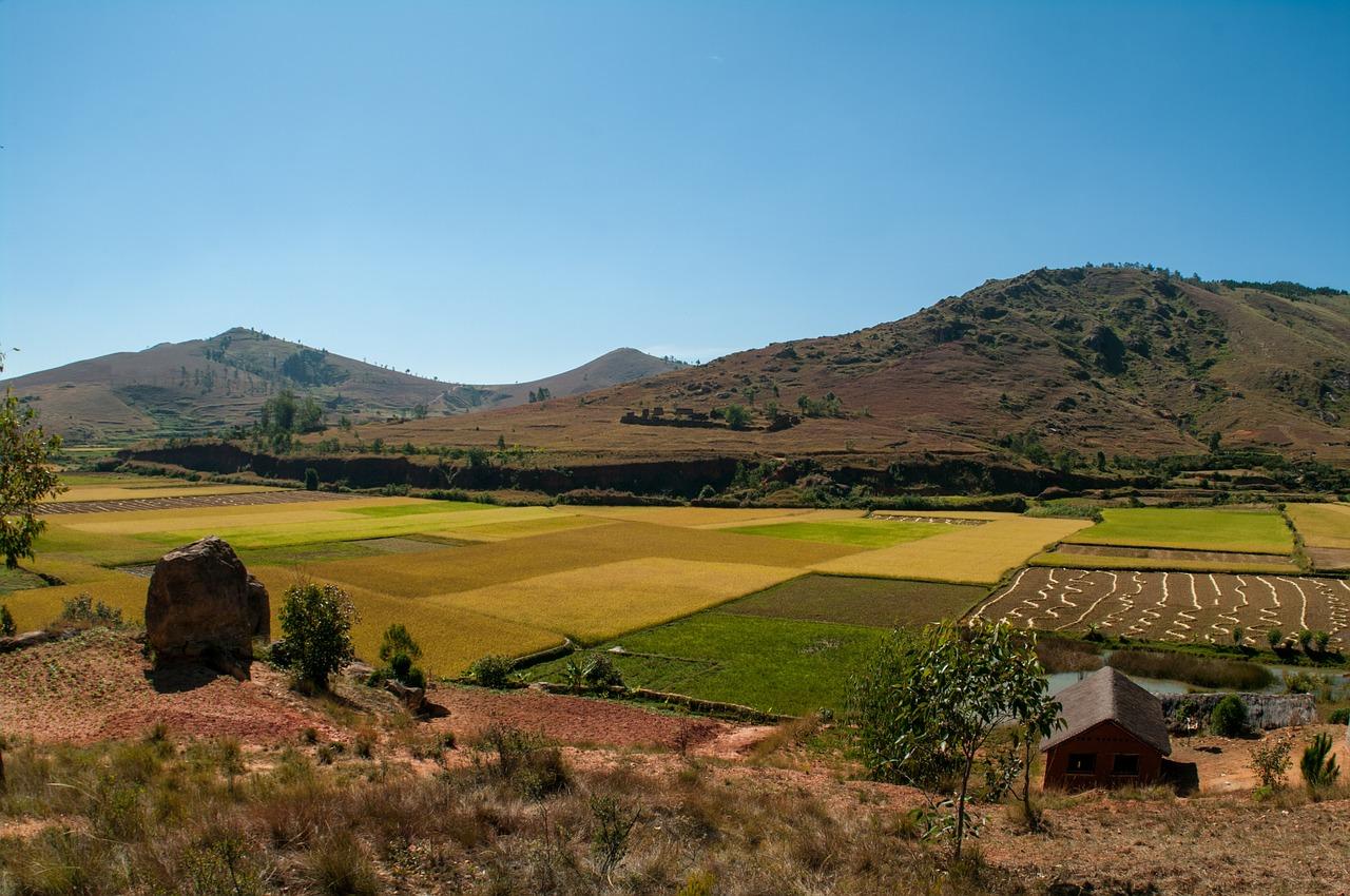 江戸時代の農民という身分