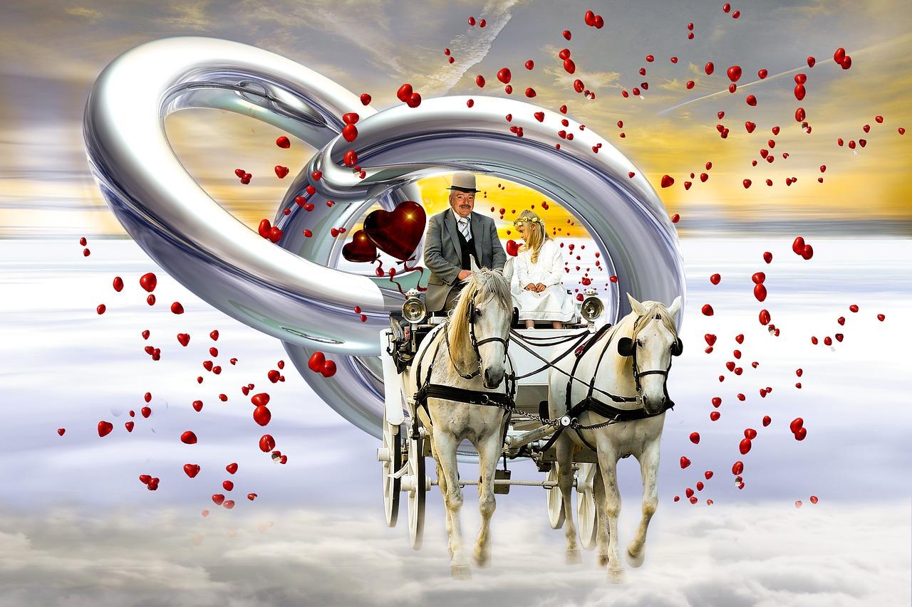 眞鍋かをりの実家と父親の職業、結婚・旦那・妹・弟・子供の名前は?